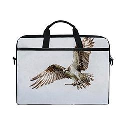 Animal Eagle Osprey Adorable Pet Cute Wild Flying Sport Lapt